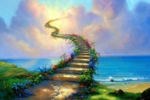 Чудесните патишта на животот