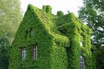 Неверојатни вертикални градини