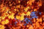 Збогум лето, добредојде есен!