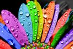 Супер бои за супер расположение