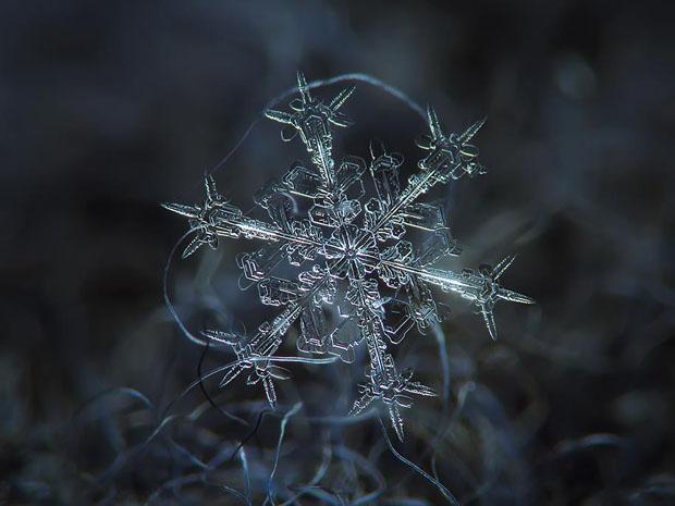 volsebni snegulki, snegulki, sneg, zima, волшебни снегулки, снегулки, снег, зима