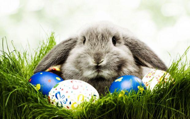 Велигденски легенди, Veligdenski legendi, Veligdensko zajace, Велигденско зајаче