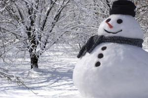 Легендата за Снешко