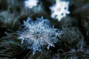 Волшебни снегулки